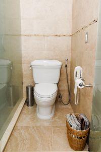 lumut kamar mandi